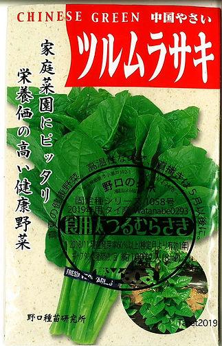1058-つるむらさき太茎(青)-01.jpg