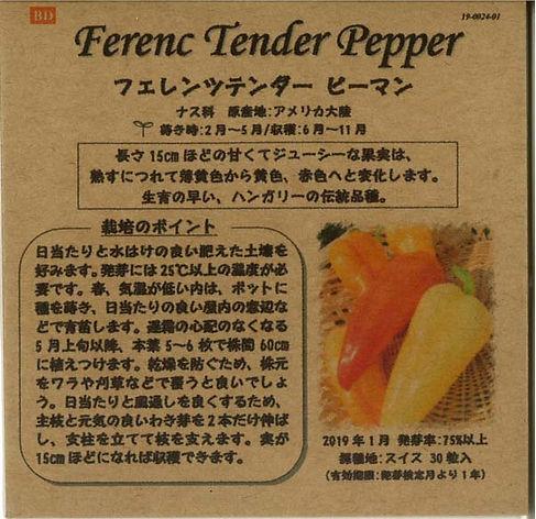 0024_フェレンツテンダー ピーマン_たねの森-01.jpg