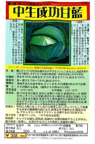 0048 中生成功甘藍-01.jpg