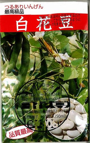 1324_白花豆-01.jpg