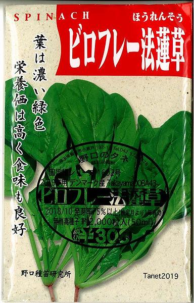 1602_ビロフレー法蓮草-01.jpg