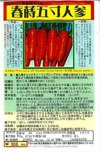 1041-春蒔五寸にんじん-02.jpg
