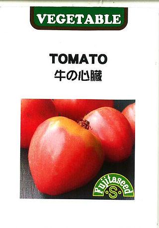 T-36 トマト 牛の心臓_藤田タネ-01.jpg