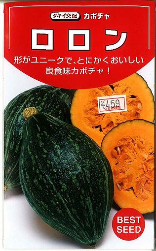 0000705101 ロロン南瓜(F1)_つる新種苗-01.jpg