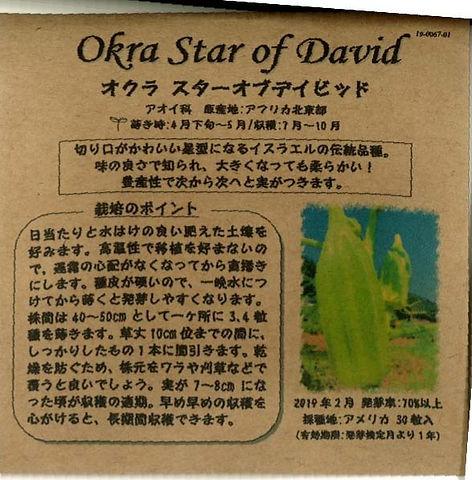 0067_オクラ スターオブデイビッド_たねの森-02_edited.jpg