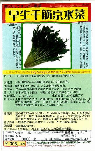 0158_早生千筋京水菜-01.jpg