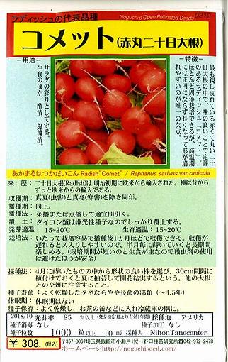0212_コメット(赤丸二十日大根)-01.jpg