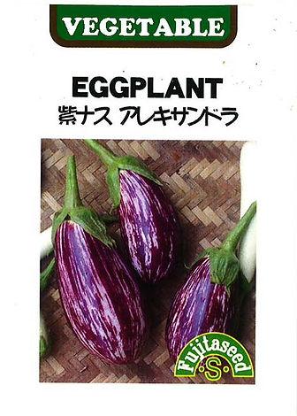 K-44 紫ナス アレキサンドラ_藤田タネ-01.jpg