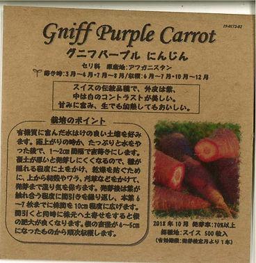 0172_グニフパープル にんじん_たねの森-01.jpg