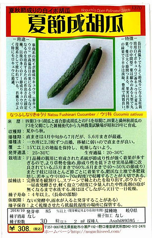 1370_夏節成胡瓜-01.jpg