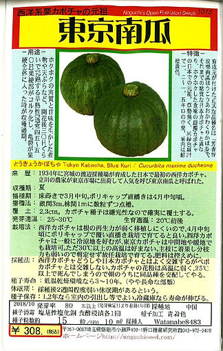 1015-東京かぼちゃ-01.jpg