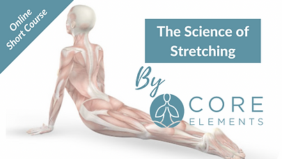 urE8hftbQwOM9uP7pzgF_The_Science_of_Stretching_Graphic_.png