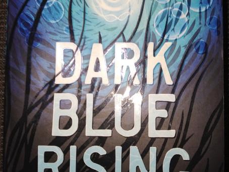 Dark Blue Rising, Teri Terry