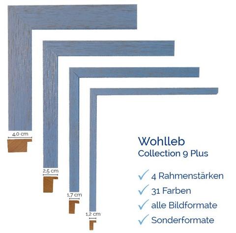 Wohlleb 9 Plus