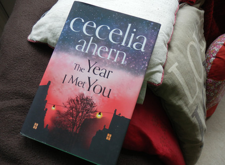 The Year I Met You, by Cecelia Ahern