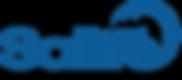 Logo Salitre Azul.png
