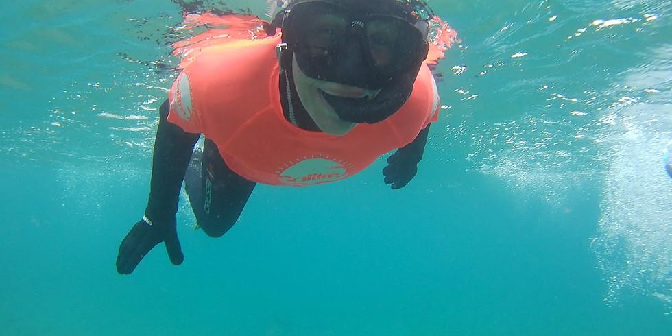 Snorkel & Breathing - V12 G1