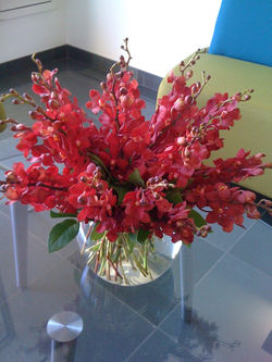 Orchids fishbowl design