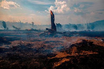 190828102605-brazil-fire.jpg