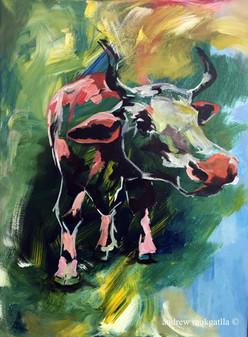 Andrew Mokgatla_Mmasetjhaba Dairy Cow.jp