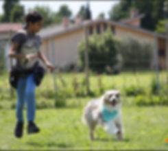 service dog, sostegno devia giovanili, messa alla proa