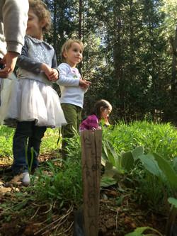 Sprouts Preschool Grass Valley