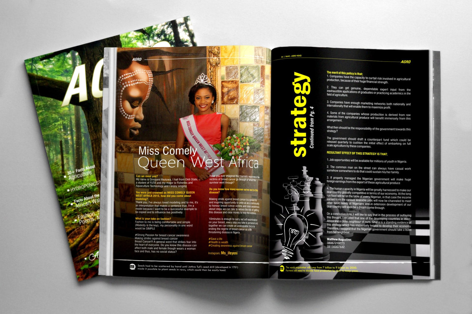 design-a-layout-for-magazine-journal-or-