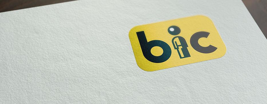 BIC Strip.jpg