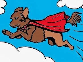SuperDog Points through Wednesday, September 29th, 2021