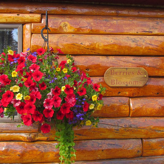 tundra-rose-guest-cottages (24).jpg