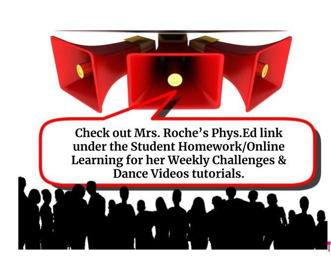 Mrs. Roche's Phys. Ed.