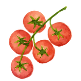 Tomatoes_edited_edited.png