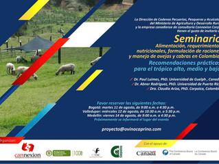 Seminario: alimentación, requerimientos nutricionales, formulación de raciones y manejo de ovejas y