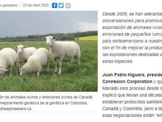 Una década después no hay acuerdo entre Canadá y Colombia sobre genética ovinocaprina.