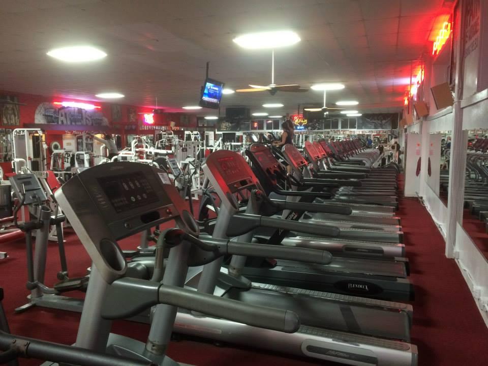 Atilis Wildwood Treadmills