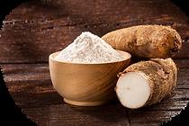 Cassava root 1.png