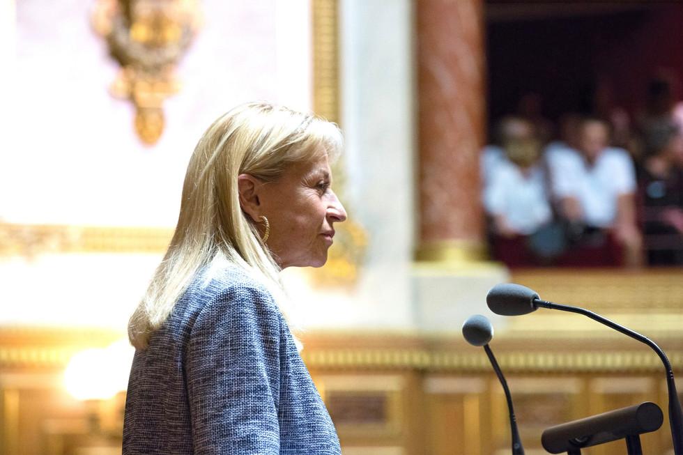 Catherine DUMAS dans l'hémicycle
