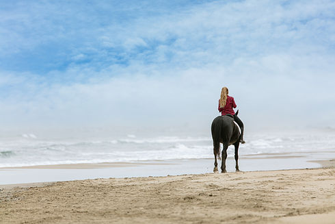 young-woman-horse-beach-cloudy-day.jpg