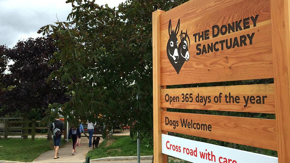 Sidmouth Donkey Sanctuary 04/04/2020