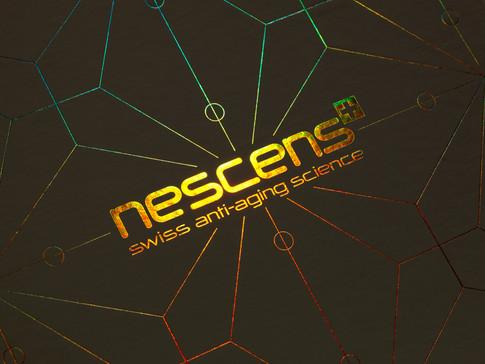 Nescnes - logo box