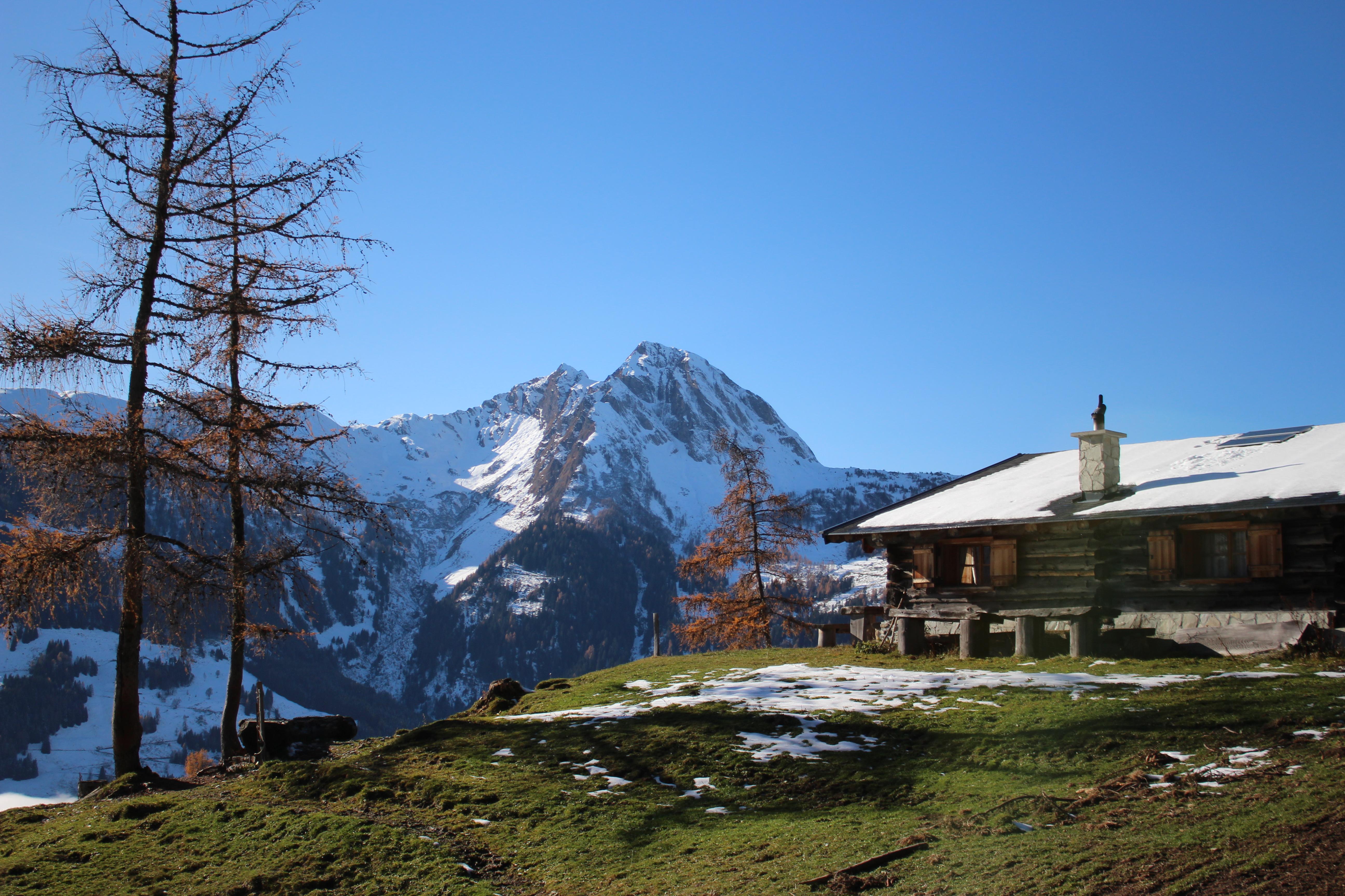 Alm in Dorfgastein