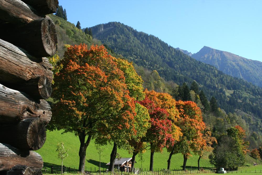Herbstbeginn in Dorfgastein