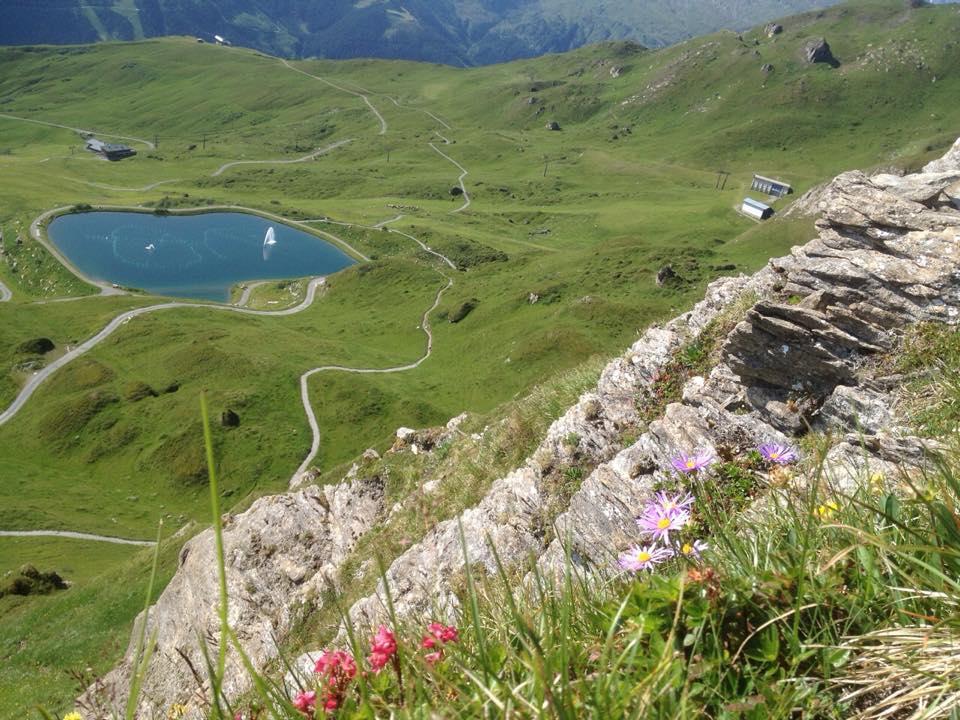 Blick vom Gratrundweg auf den Schlossalmsee