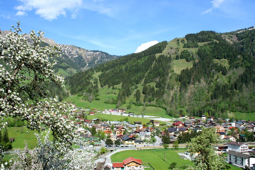 Frühlingserwachen_in_Dorfgastein