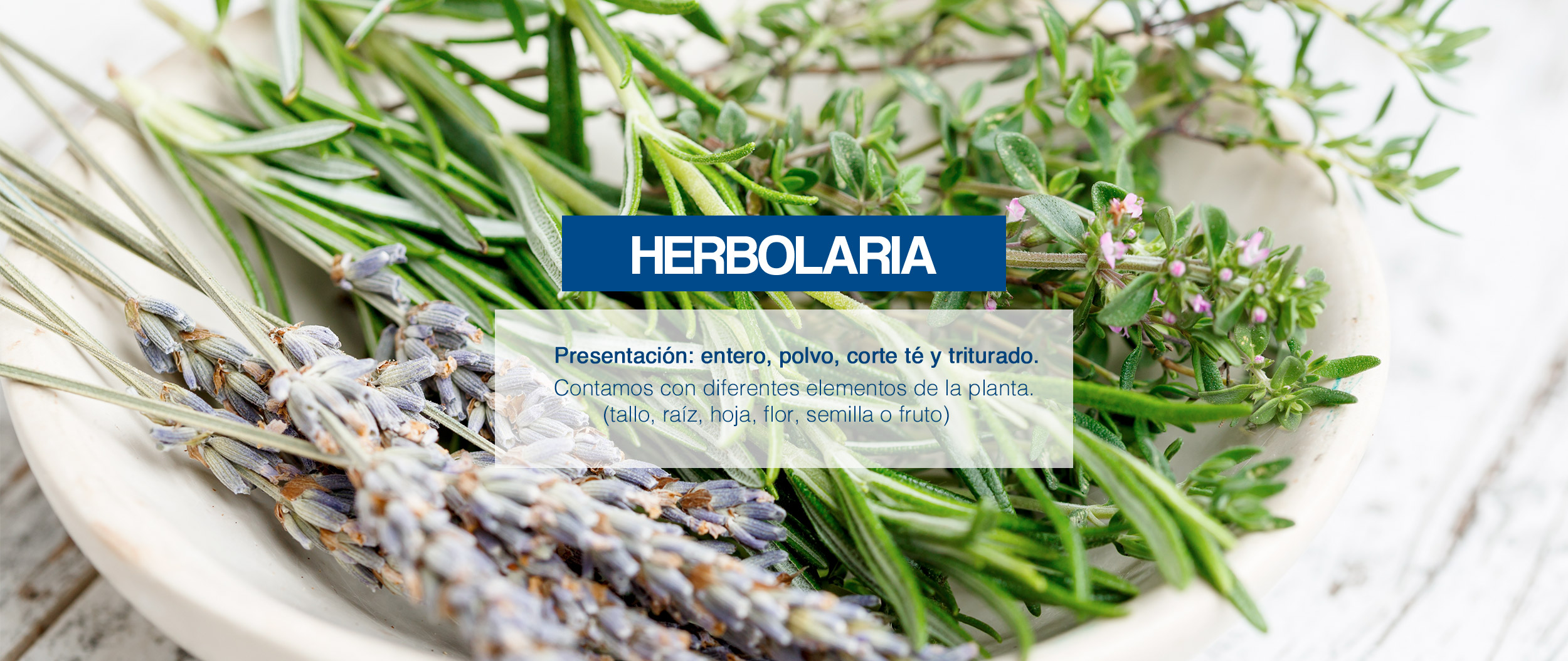 herbolaria-banner
