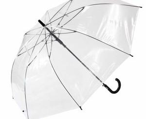 なぜ人はなんのためらいもなくビニール傘をパクるのか?