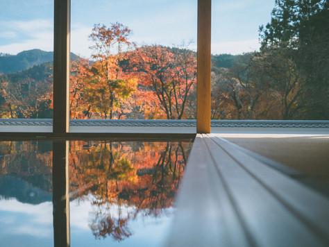 【隠れスポット】群馬県の床紅葉が見れる「宝徳寺」