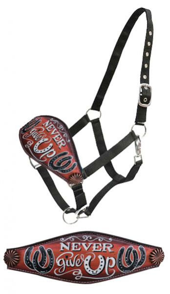 Never Give Up Bronc Halter