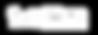GoPro_logo_white.png