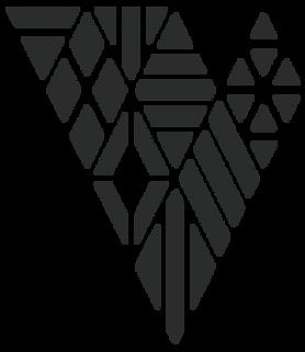 VP_pattern_web_2.png